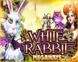 PLAY WHITE RABBIT MEGAWAYS™ FOR FREE