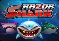 RAZOR SHARK SLOT DEMO